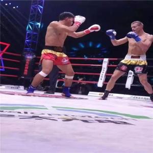 自由搏击运动员刘海南